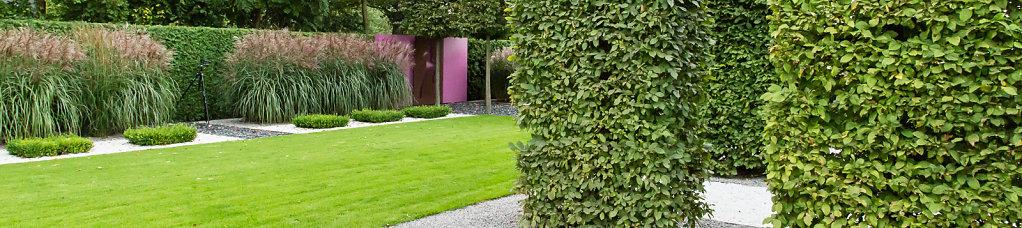 Gartenplanung-2013-09-13-09-25-dm6a7902.jpg